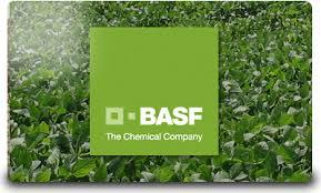 BASF lanzó Sistiva, un novedoso fungicida para tratamiento de semillas