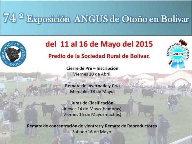 11 al 16 de mayo: La Asociación de ANGUS en Bolivar