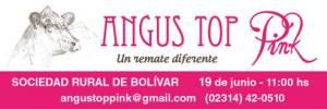 angus pink