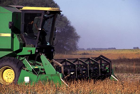 Mercado internacional del poroto de soja  ¿Qué se espera para los próximos 10 años? -BCR