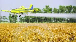 """Fearca: """"1 de cada 5 hectáreas sembradas son pulverizadas desde un avión"""""""