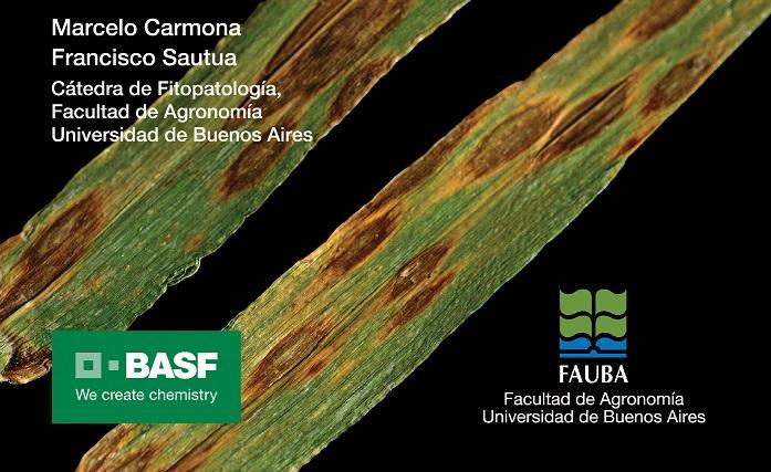 BASF y la FAUBA presentan un manual para el diagnóstico de enfermedades foliares