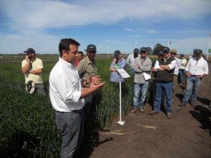 Ing Leandro Barcos explicando tratamiento de semillas en trigo