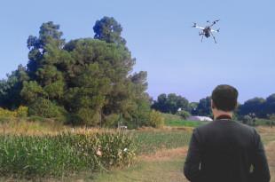 dron-y-cultivo FAUBA