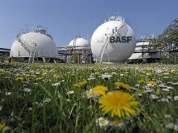 División de Protección de cultivos de BASF