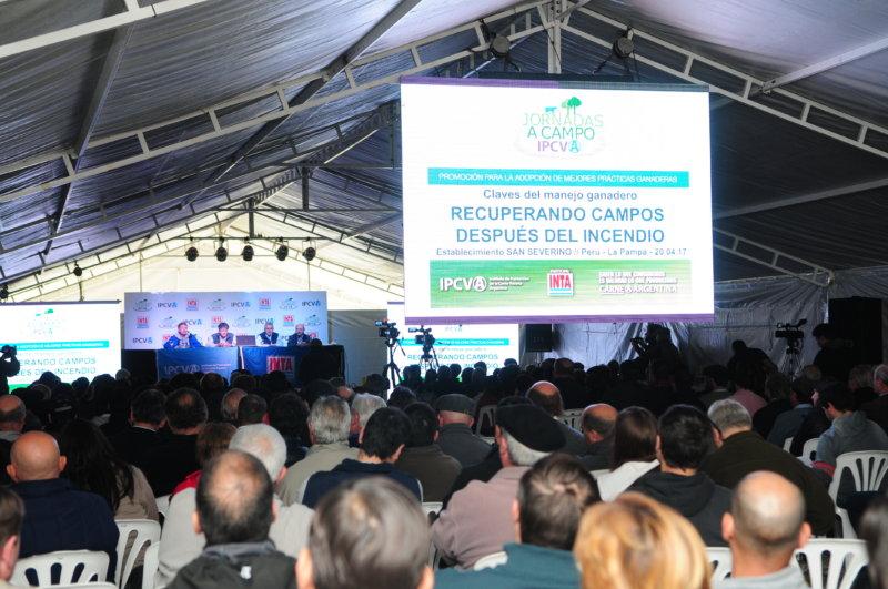 JORNADA A CAMPO DEL IPCVA EN LA PAMPA