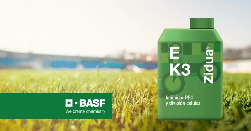 BASF presentó Zidua®, un innovador herbicida para maíz y soja