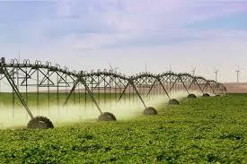La cantidad de agua que se aplicó al Maíz en la campaña 2017/18