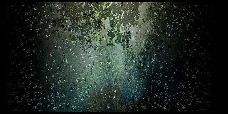 Las lluvias mejoraron la disponibilidad de agua en el suelo