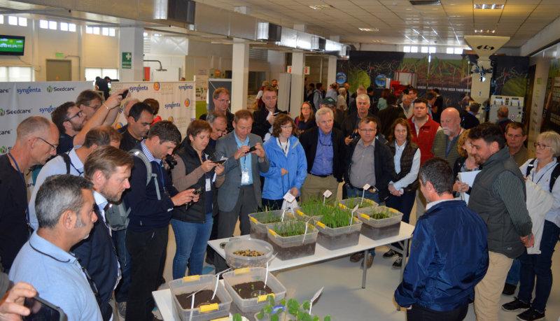 El Seedcare Institute LAS de Syngenta cumplió 4 años