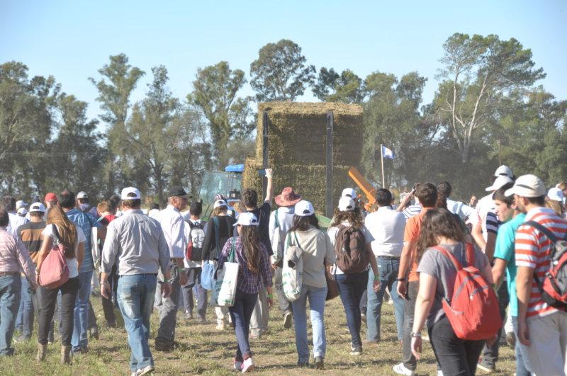 El INTA Manfredi prepara la Jornada Nacional de Forrajes Conservados