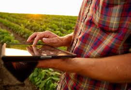 Incorporar tecnología ¿por seguir la ola o por tener conocimiento técnico?