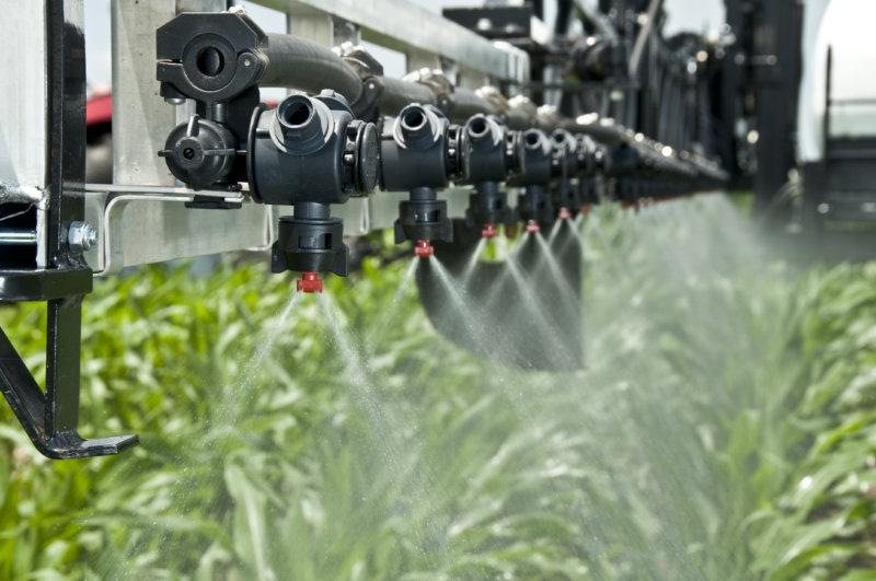 Fertilización nitrogenada en trigo – El foliar también importa