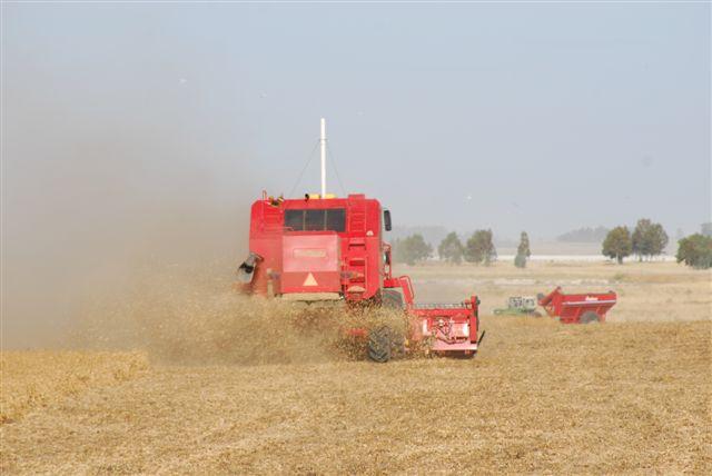 Liquidación de divisas del sector industrial/exportador del agro