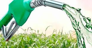 Biodiesel, eslabón clave en la cadena sojera