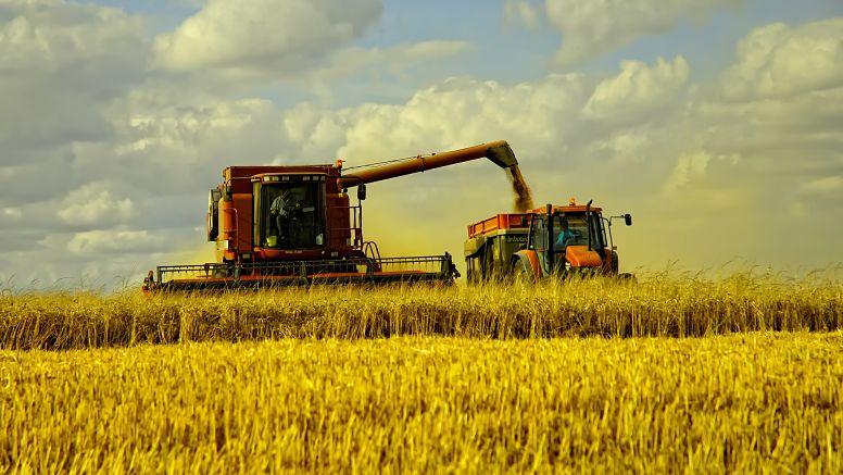 Comportamiento comercial de los productores en los principales cultivos