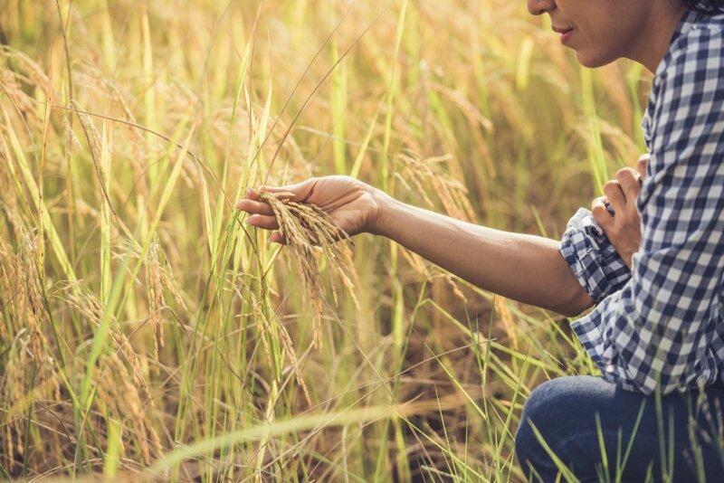 Mi propio destino, ser Mujer Rural