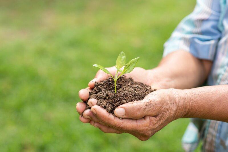 Un brindis por la sustentabilidad
