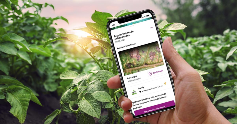 Agrofy y xarvio™ se unen para darle más soluciones digitales al agro