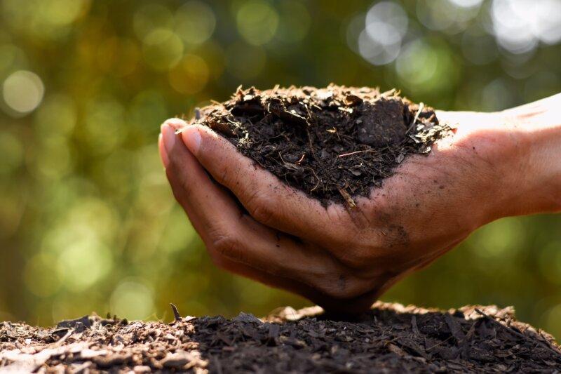 Verdesian: Tecnología innovadora para hacer uso eficiente de nutrientes